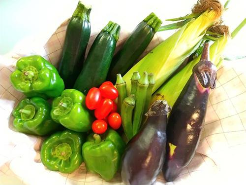 産直食材・野菜